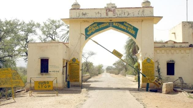 Sariska Tiger Reserve is divided into 102 beats for monitoring and protection of wildlife.(HT file photo)