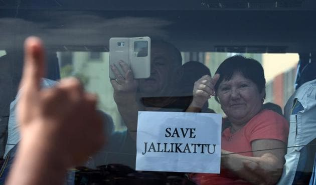 A foreign tourist raises her thumb and holds a placard against the car window as she passes students during a demonstration against the ban on the Jallikattu bull taming ritual and a call for a ban on animal rights orgnisation PETA, in Chennai on January 21.(AFP)