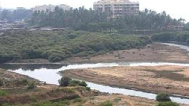 Mumbai has 5,775 hectares (ha) of mangrove cover, of which, 4,000 ha is on the government-owned land (protected forest areas).(HT)
