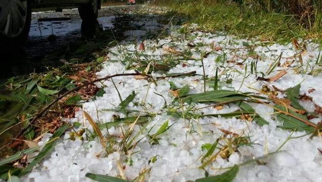 An analysis of hailstorms between 1981 and 2015 across the country by the India Meteorological Department (IMD), Pune, has found that Maharashtra is most prone to this extreme weather event.(HT File Photo)