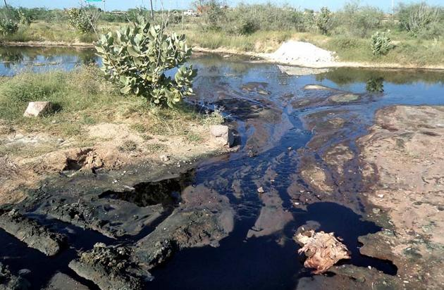 Industrial effluents flow into the Bandi River in Pali district.(HT Photo)