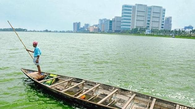 The East Kolkata Wetlands are a system of fish tanks, canals and agricultural fields that organically treat sewage of Kolkata.(HT Photo)