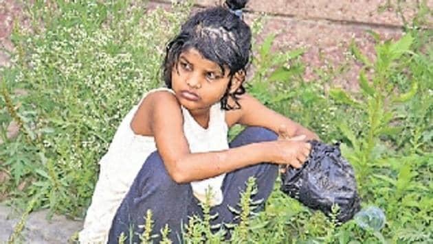 Van Durga was found abandoned in Katarniyaghat wildlife sanctuary in January.(HT Photo)