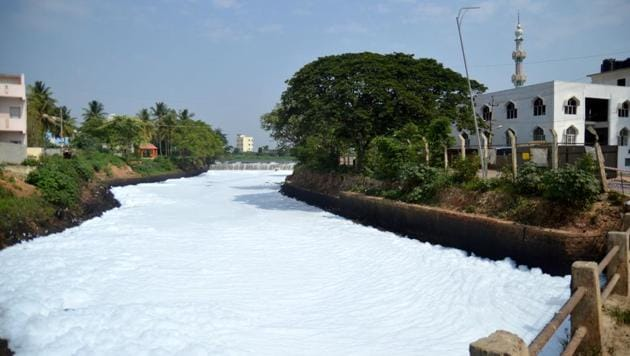 The foaming Bellandur lake has alarmed residents and environmentalists alike.(Kashif Masood / HT Photo)