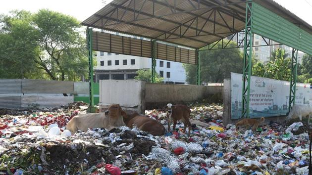 A garbage dump near Phase 11, SAS Nagar. All residential areas, offices, institutions will be covered under the project.(HT File Photo)