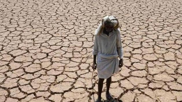 Representative Image: An Indian farmer poses in his dried up cotton field at Chandampet Mandal in Nalgonda east of Hyderabad on April 25, 2016, in the southern Indian state of Telangana.(AFP)