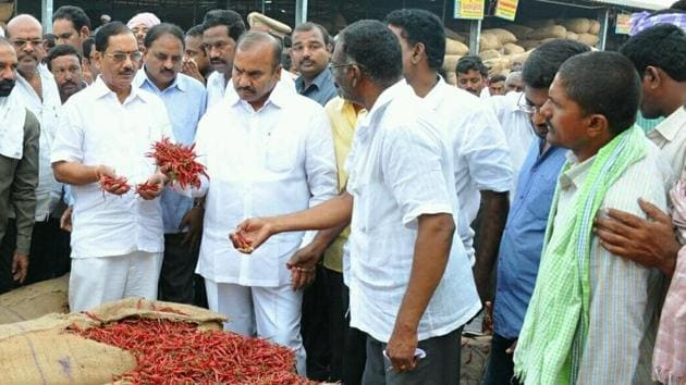 For the past few weeks, mounds of chilli have been piling up at major market yards across both states.(HT Photo)