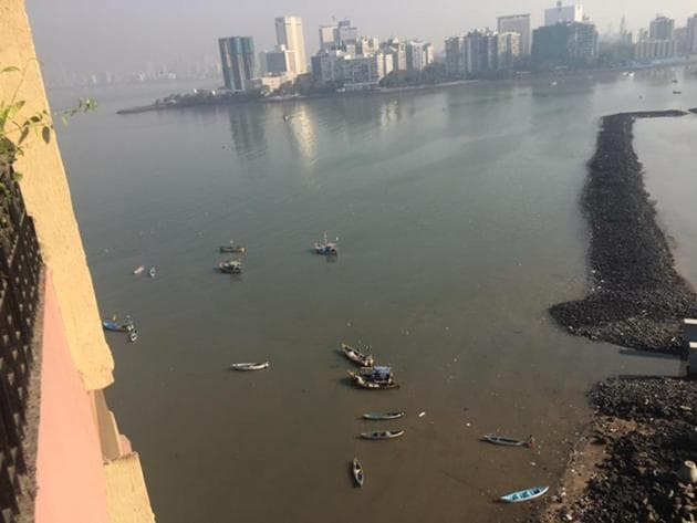 The photograph of the polluted shoreline taken by the complainant