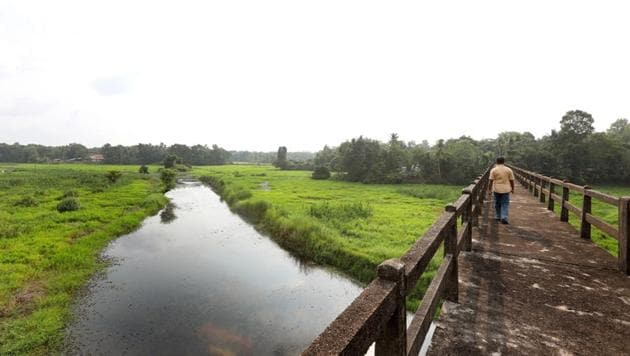 The Kuttemperoor river in Alappuzha district that has been revived after two decades.(Vivek Nair/HT Photo)