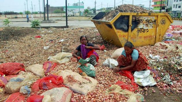 Women sorting out onions which were thrown on the roads by the agitating farmers in Bhopal on Tuesday.(PTI Photo)