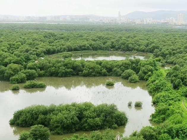 Mumbai has a mangrove cover of 277 hectares.(HT file)