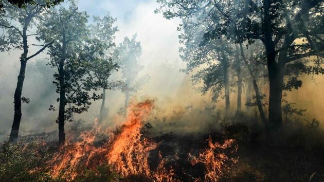 <p>A fire burning in Artigues, as part of a blaze that has consumed swathes of land in southeastern France for a second day in a row. </p> (Anne-Christine...