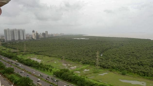In 1972, there were just 45.3 sq km of mangroves in Mumbai.(HT)