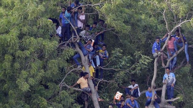 Sri Lankan fans perch on a tree to watch the first one-day international cricket match between Sri Lanka and India in Dambulla. Sri Lanka lost by nine wickets in the five-match series.(AP)
