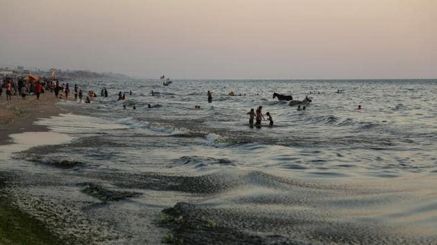 This file photo taken on July 03, 2017 shows Palestinian boys swimming in the sea next to donkeys in Gaza City in sewage-polluted waters.(AFP)