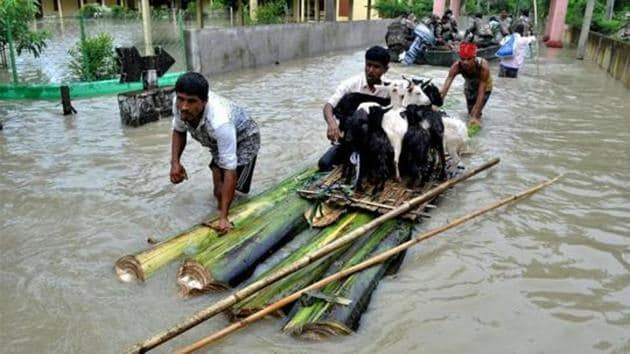 Villagers ferrying their cattle to safety on a raft made with banana plant stems from a flood-hit village in Nagaon district of Assam.(PTI File Photo)