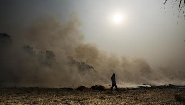 Over a dozen cases of crop burning have been reported from Haryana till September 27.(Ravi Choudhary/HT File Photo)