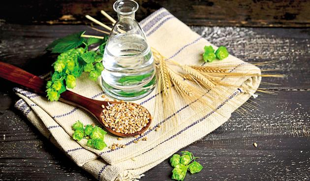 Much like the wheat plant barley is a kind of grass, its grains are called jau(Getty Images)