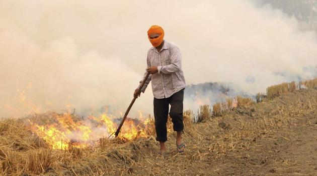 Crop residue is usually set afire due to cost concerns and short time gap between summer and winter crops, besides lack of incentives and equipment to manually cut down the stubble.(HT FIle)