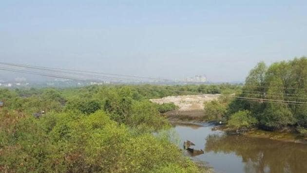 Mumbai has 5,800 hectares (ha) of mangrove cover – 4,000 ha on government-owned land and 1,800 ha in private areas -- covering nearly 10% of its area(FILE)