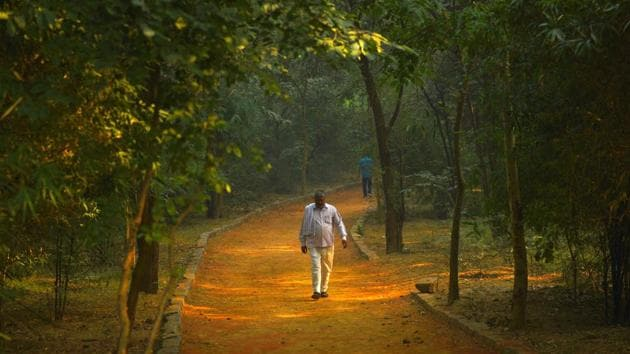 Sanjay Van in south Delhi is part of the south central ridge.(Sanchit Khanna/HT PHOTO)