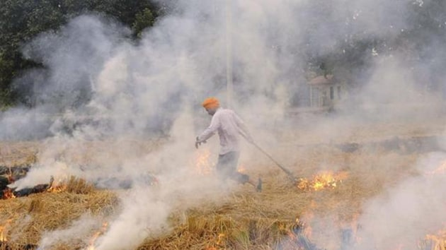 As per a Punjab government spokesperson, around 20 million tonnes of stubble is generated in the state in a season.(HT File)
