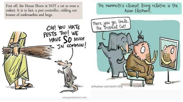 Chakravarty's comics seek to inform as well as entertain.(Green_humour/Instagram)