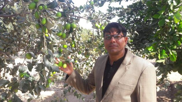 Professor Shyam Sunder Jyani has started a mass movement in western Rajasthan through the concept of familial forestry.(HT Photo.)