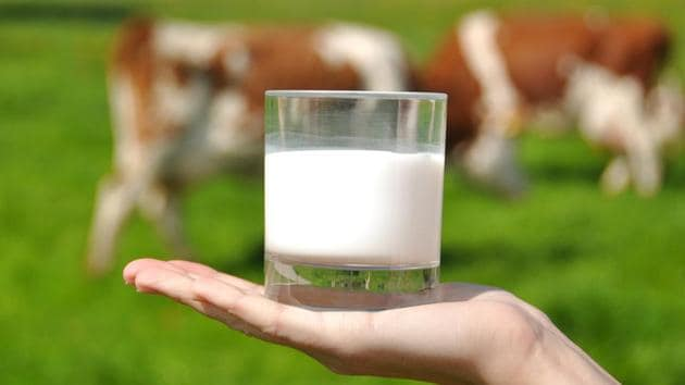Daily consumption of grassmilk dairy products could potentially improve health trends, the study noted.(Shutterstock)