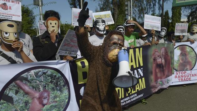 Environmental activists hold a rally in Banda Aceh in Indonesia.(AFP File Photo)