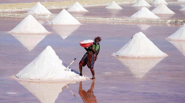 An Indian labourer works on a salt pan in the outskirts of Nagaur district, Rajasthan, March 7. International Monetary Fund chief, Christine Lagarde said raising women's participation in the workforce to the level of men could boost the Indian economy by 27%.(AFP)