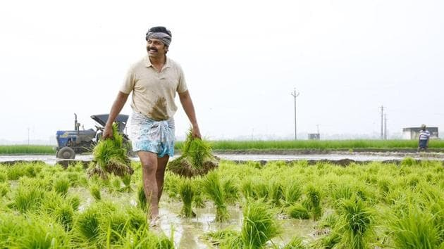 Karthi plays a farmer in Kadai Kutty Singam, which also stars Sayyeshaa and Priya Bhavani Shankar.(Twitter)