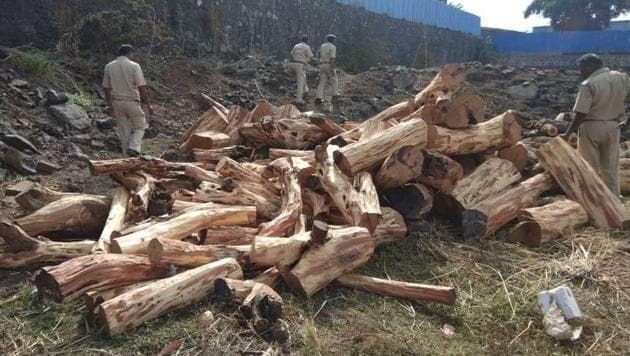 Acting on a tip-off, 250 forest and police personnel busted a smuggling operation where 60 tonnes of wood was seized in Thane district.(HT Photo)