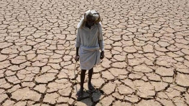 Each farm suicide leaves behind a trail of broken families with women, in most cases, bearing the brunt.(HT File/Representative image)