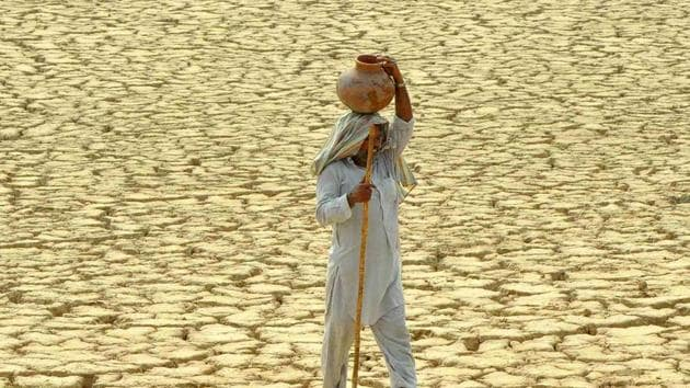 The countries at the greatest vulnerability to food insecurity when moving from the present-day climate to 2 degrees Celsius global warming are Oman, India, Bangladesh, Saudi Arabia and Brazil, researchers said.(Representative photo)