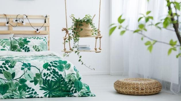 Keeping air-purifying plants, or those which require less water, will help keep your room cool during summer.(Getty Images/iStockphoto)