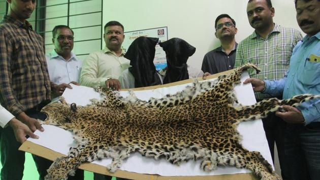 Officials display the leopard skin that was seized.(PRAFUL GANGURDE/HT PHOTO)