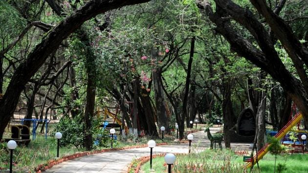 The renovated Nagar Van, aka City Forest, is ready for inauguration this month. Spread over 100 hectares, it is located in and around the Sukhna reserve forest in Chandigarh.(Ravi Kumar/HT)