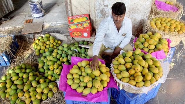 Vendor sealing the Famous Mango (Alphonso) of Konkan Region for sale arrived in Crawford Market, in Mumbai.(HT File Photo)