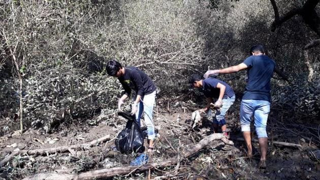 College students remove garbage from mangroves in Bandra, Mumbai.(HT)