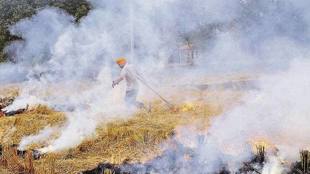 Officials of various state pollution control boards, however, claimed that this year, the number of crop burning incidents appear to be lesser.(HT/File Photo)