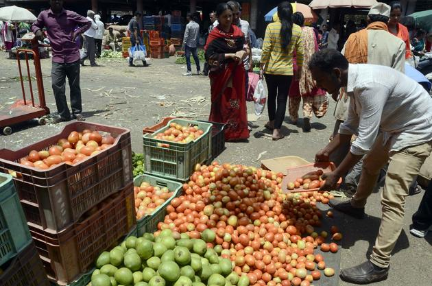Increase in the supply of tomatoes has led to a fall in its price by 15 per cent.(Ravindra Joshi/HT PHOTO)