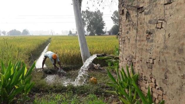 As per the state government records, 70 per cent of the Rajasthan population is dependent on agriculture.(HT FILE PHOTO)