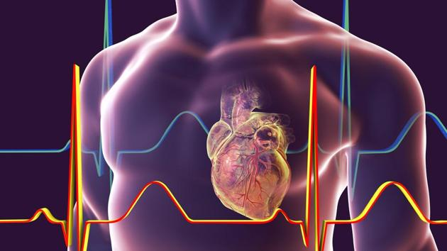 Cardiovascular disease (CVD) is a killer with such a high national burden that its cost between 2012 and 2030 is almost the equivalent of wiping out an entire year of Indian GDP(Getty Images/iStockphoto)