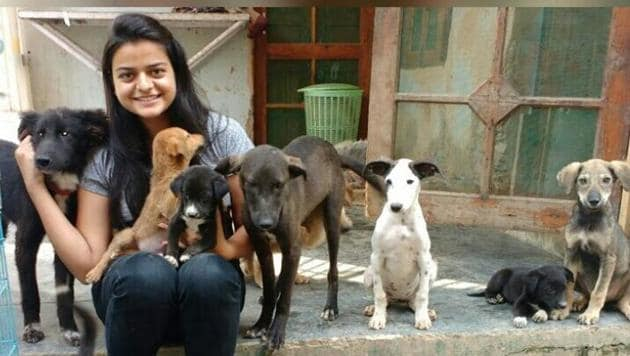 Ayushi Sharma with her favourite bunch of puppies.(HT Photo)