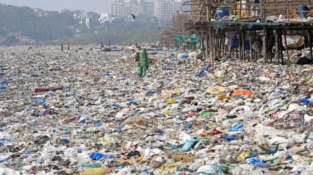 The mangrove cell will clean-up Colaba, Vikhroli, Kandivli, Borivli and Trombay in days to come.(HT FILE)