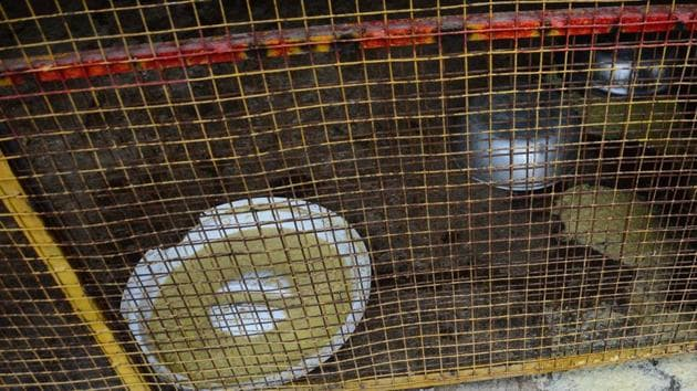 A kennel at Blue Cross society hospital. Many animal welfare board volunteers allege that dogs found inside the hospital are often mistreated and kept in extremely unkempt kennels.(Shankar Narayan/HT PHOTO)