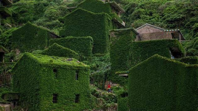 Abandoned houses in Houtouwan on China's Shengshan island in Zhejiang province. It was once a thriving fishing community.(AFP)