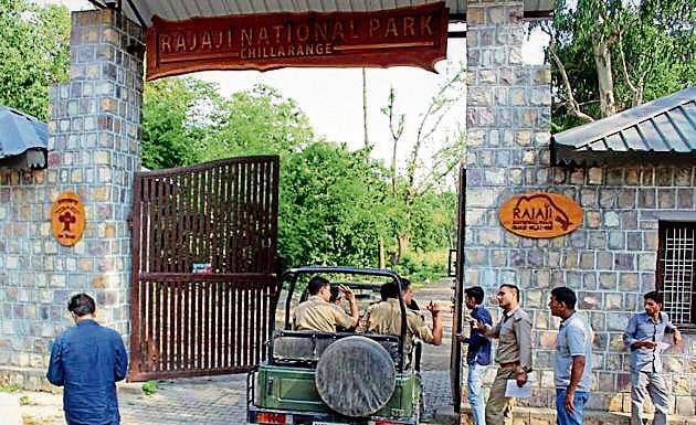 Rajaji Tiger Reserve.(HT Photo)