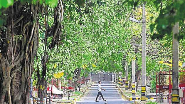 A view of green cover near government quarters at Sarojini Nagar in New Delhi.(Sanchit Khanna/HT File Photo)